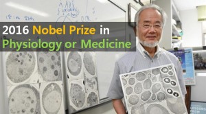 A STEP TOWARDS PEACE The Nobel Prize in Physiology or Medicine 2016-10-3 Yoshinori Ohsumi