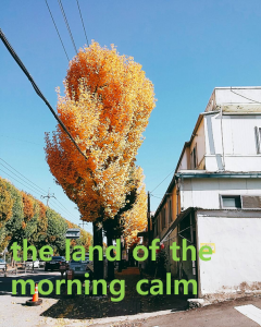 A STEP TOWARDS PEACE Today is College Scholastic Ability Test day : the land of the morning calm