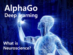"A STEP TOWARDS PEACE ""Bugs in the Brain"" Neuroscience for public knowledge soul Neuroscience mind Deep learning AlphaGo AI"