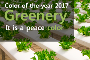 A STEP TOWARDS PEACE 'Greenery Peace Color' : 2017 Color Trend Second wind Revitalize Peace Pantone new beginnings Leatrice Eiseman Greenery peace color Greenery Gabriel Coco Chanel Color of the year 2017