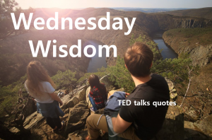 A STEP TOWARDS PEACE TED talks quotes : Wednesday Wisdom Wednesday Wisdom TED talks quotes Sir Ken Robinson Simon Sinek Shawn Achor Maya Angelou David Carson Brene Brown Alain de Botton